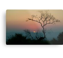 Tree Watching The Perfect Sunset Metal Print