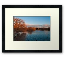 Sun setting at Attenborough Nature Reserve  Framed Print