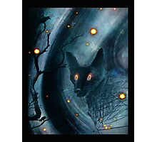 firefly friends Photographic Print