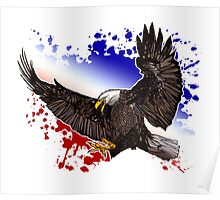 Bald Eagle - Red, White & Blue Poster