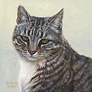 Stripes - Feral Cat at Rockaway by artbyakiko