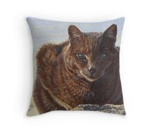 Izzy - Feral Cat at Rockaway Throw Pillow