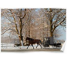 Horse and Buggy on a Wintery Morning Poster