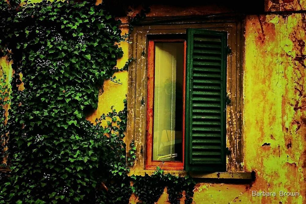 Old World Window by Barbara  Brown
