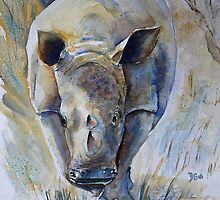 Rhino Sketch by Debbie Schiff