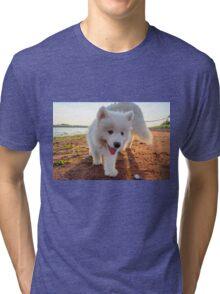 Samoyed puppy on the beach  Tri-blend T-Shirt