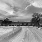 Finally Snow In Colorado! by Tyler Johnson