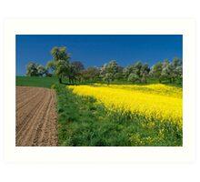 Spring Fields Art Print