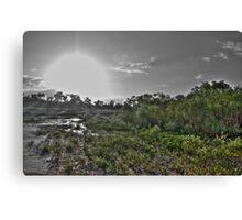 Mangrove Sunset HDR Canvas Print