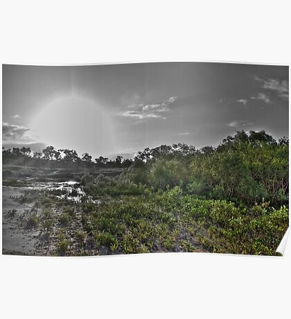 Mangrove Sunset HDR Poster