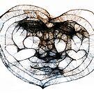 Scribbler Heart of mine by HeklaHekla