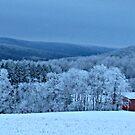 An Icy Wonderland by Robert Miesner