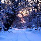 Snowy Sunrise by M.C. O'Connor