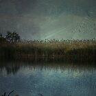 ~ Blue  Moon Glow ~ by Lynda Heins