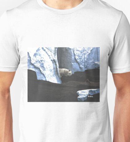 Sleeping Giant Unisex T-Shirt