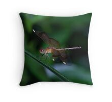 Dragonfly on a green background Throw Pillow