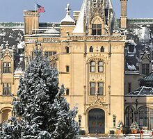 Biltmore in snow by JGilmer