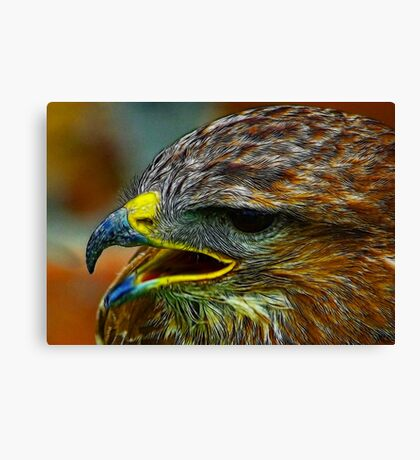 The Beak Canvas Print