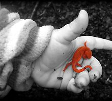 Smallest hand...biggest World by sillyfrog