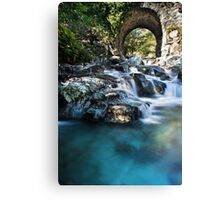 One Step On The Water Canvas Print