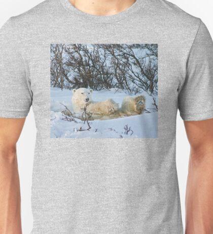 Yoga Bear snow on his face Unisex T-Shirt