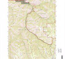 USGS Topo Map Oregon Bingham Springs 279046 1995 24000 by wetdryvac