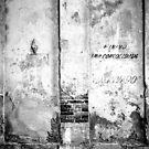 Textures of Havana by Matthew Walters