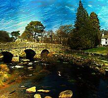 Postbridge, Dartmoor  by buttonpresser