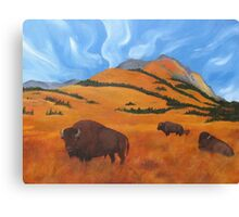 Buffalo on the Foothills Canvas Print