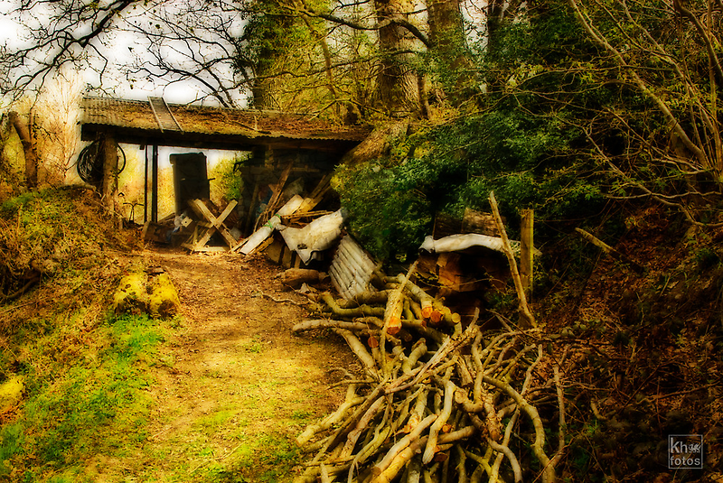 To the Woodshed by Kelvin Hughes