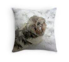 Snow Snout Throw Pillow