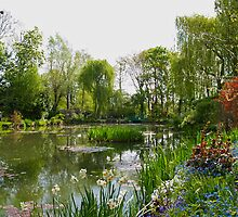 Monet's Water Garden at Giverny in Springtime. by Alex Cassels