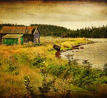 Black Duck Cove - textured by PhotosByHealy