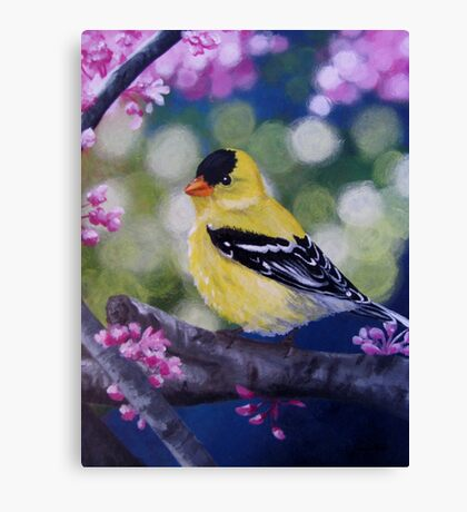 Yellow Finch Among the Blossoms Canvas Print