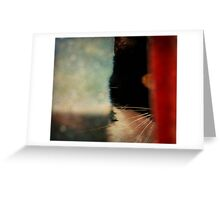 Silence from the Shadows. Greeting Card
