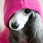 Pink Hoodie by Cristina Rossi