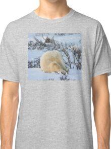 Yoga bear Plow pose Classic T-Shirt