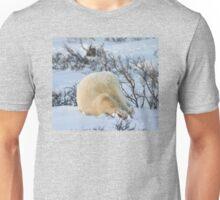Yoga bear Plow pose Unisex T-Shirt