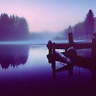 Reflections Of Winter. by Aj Finan