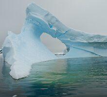 Iceberg in Antarctica by mcreighton