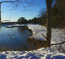Kennebunk, Maine - Tidal Inlet by MaryinMaine