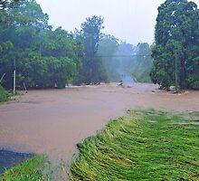 Cedar Creek, 100 Metres From Our Home. Brisbane Floods January 2011, Queensland, Australia.  by Ralph de Zilva