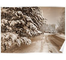 Winter Roadway Poster