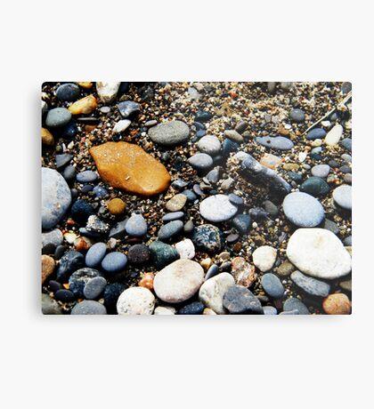 Pebbles at Point Pelee, Ontario Metal Print