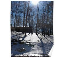 Sun and Snow on the Wooded Hillside Poster