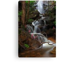 Cascade of the Hyacinth Orchid Canvas Print
