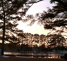 Dusk on a Slough in Southside, AL by Charldia
