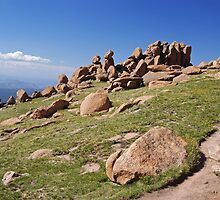 Boulders by Richard Williams