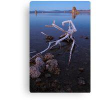 Mono Lake Deadwood Canvas Print