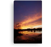 Evening glow over Harford marshes.. Canvas Print